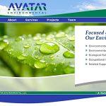 Avatar Environmental